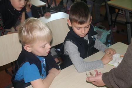 Zachować zimną krew - herpetofauna Polski