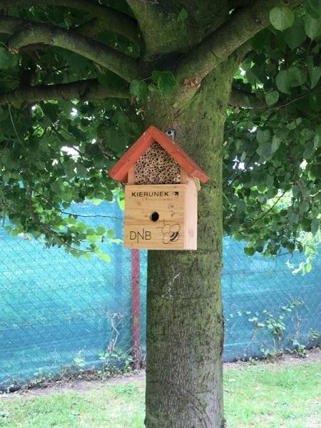 Klasy młodsze zapraszają pszczółki
